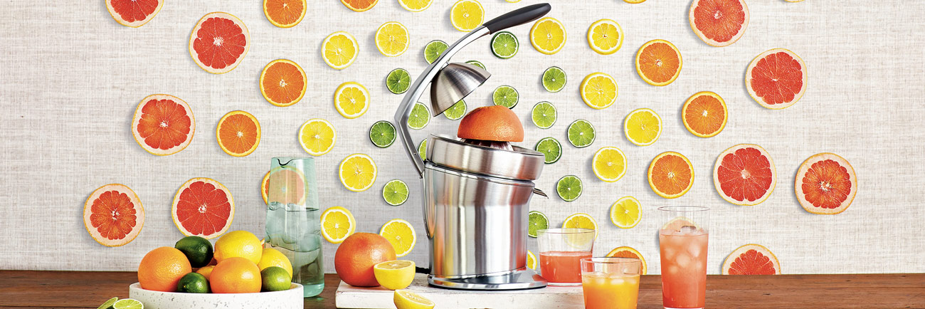 the Citrus Press™ Pro Juicers in Silver