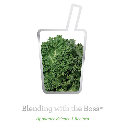 the Boss To Go™ Blenders in Brushed Aluminium complimentary recipe book